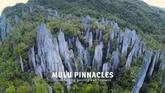Journey to Mulu National Park & Pinnacles (Sarawak Malaysia)